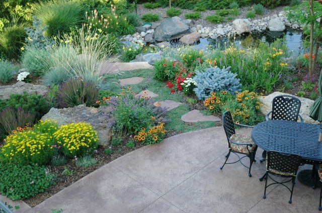 1 design for Xeriscaped backyard design